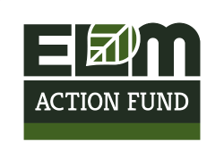 ELM_ActionFund-Logo-Final.png