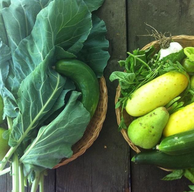 Mini Harvest.jpg