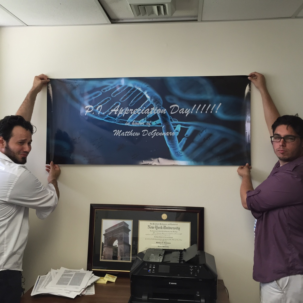 The thing I am most proud of in my office is the banner my lab made me