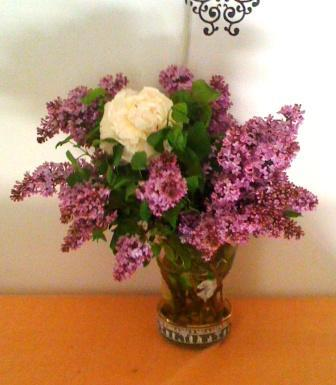 helen lilacs.jpg