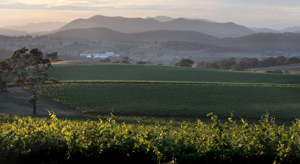 The Robert Oatley Vineyards Winery viewed at dawn Mudgee Australia.JPG