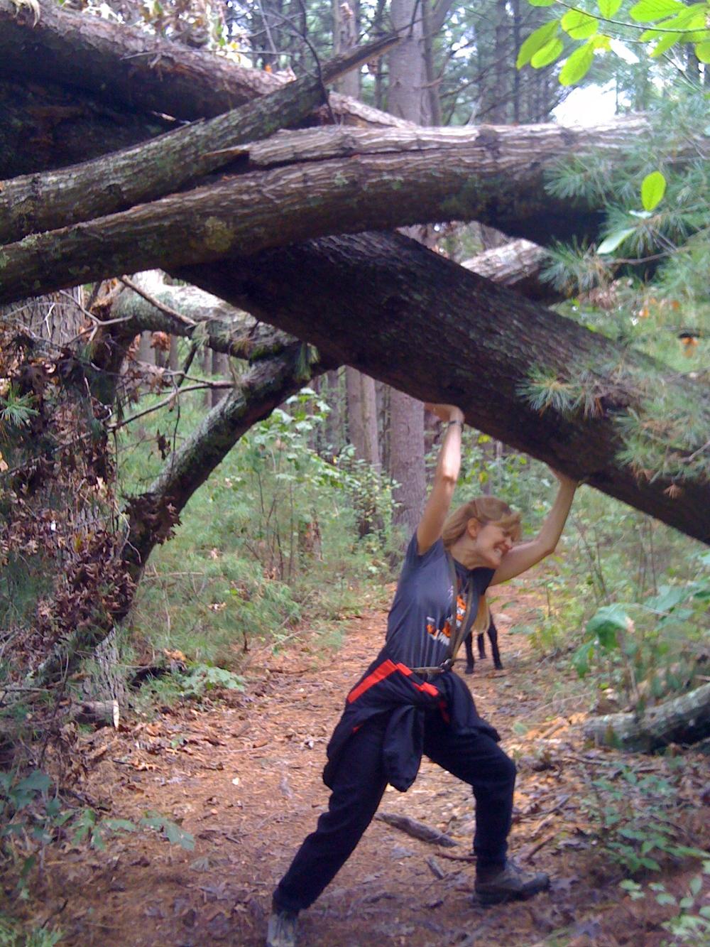 TKJ-holding-tree.JPG