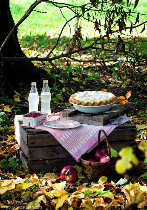 fall picnic 3.jpg