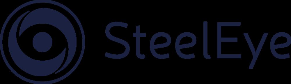 SteelEye_LightBkg_CMYK_Logo_HighRes_v2.png