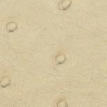 Avestruz crema