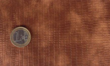 Iguana euro
