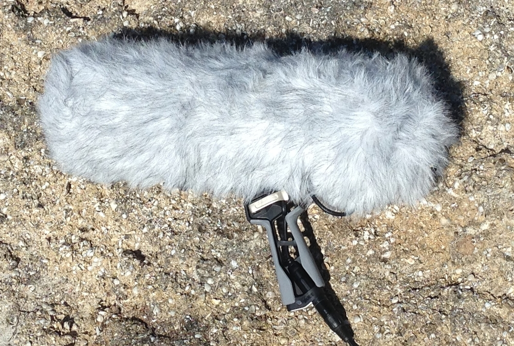 The new and improved Rode Blimp with Rycote Onboard!