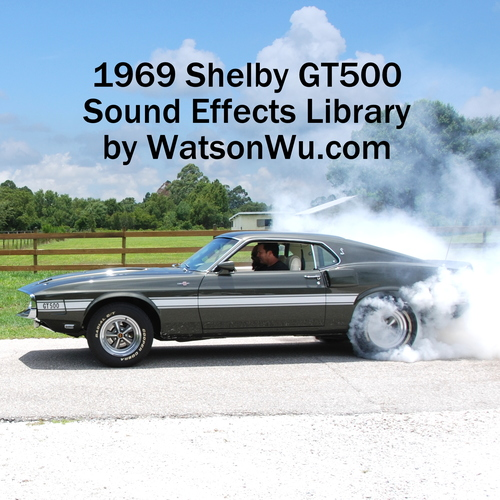 Ford Mustang Gt500 1969 1969 Ford Mustang Shelby Gt500