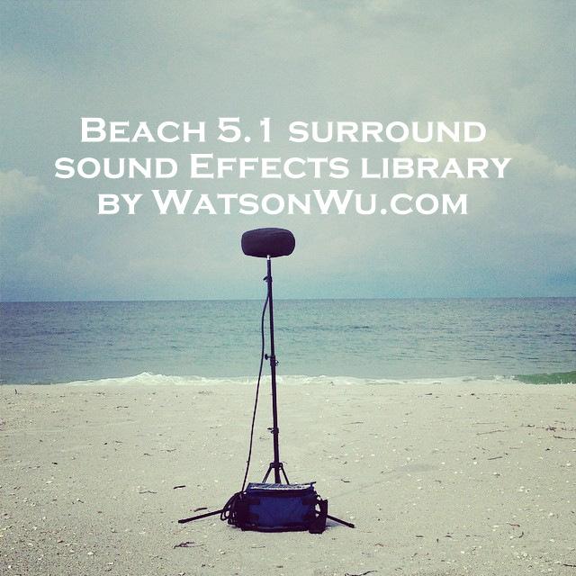 Beach (D001A) 5ft - 5 1 surround sound clip