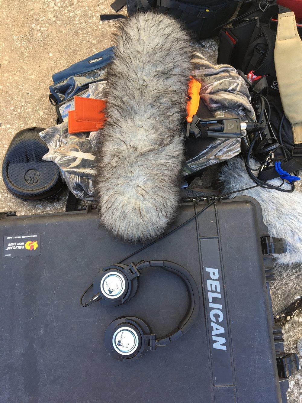 _IMG_7399 Watson's Recording Gear.jpg