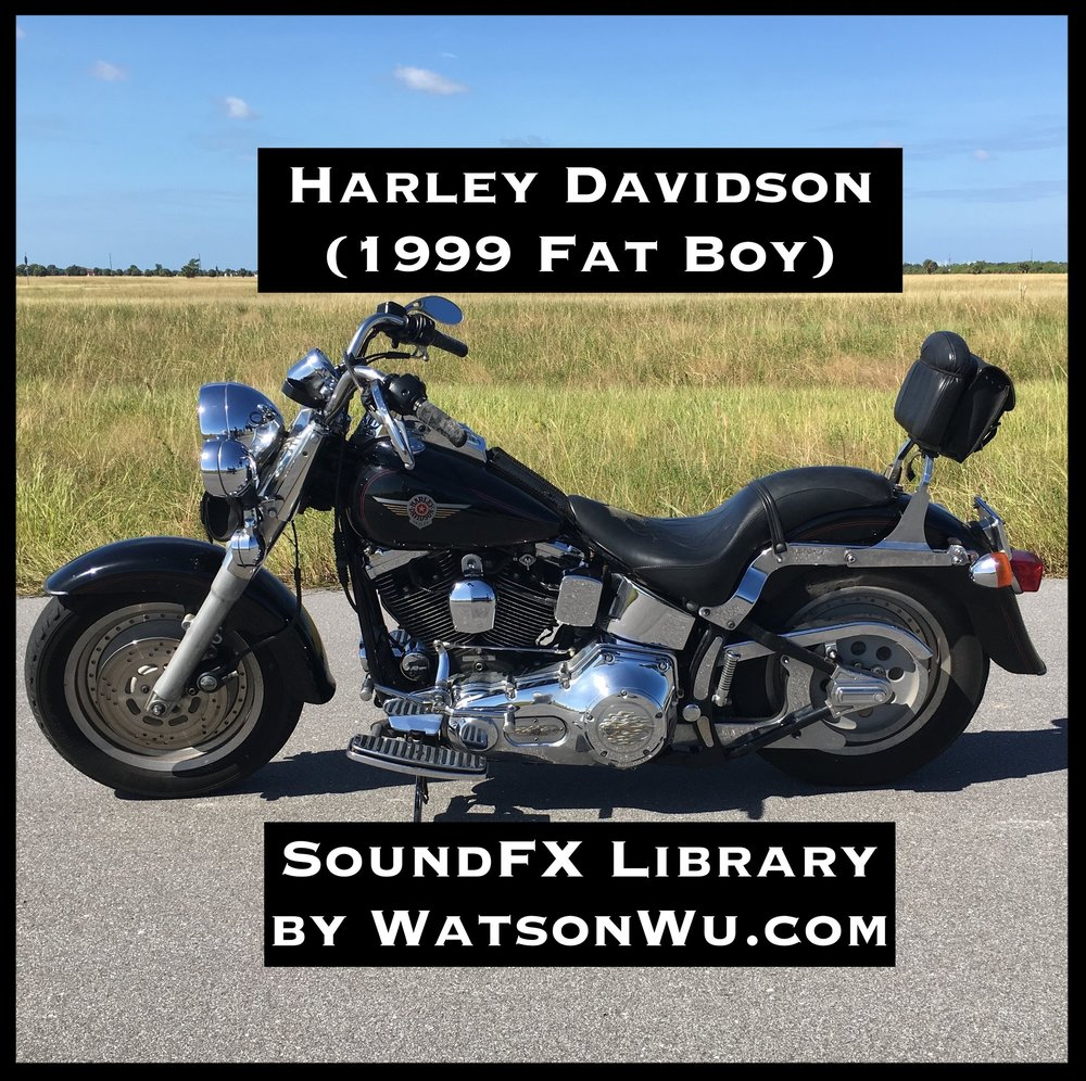 Harley Side IMG_3374 cropped text.JPG