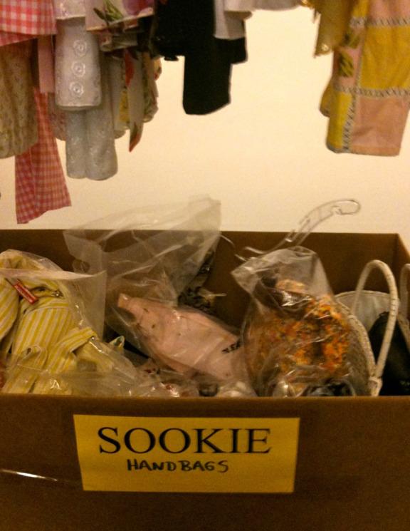 sookies-closet.jpg