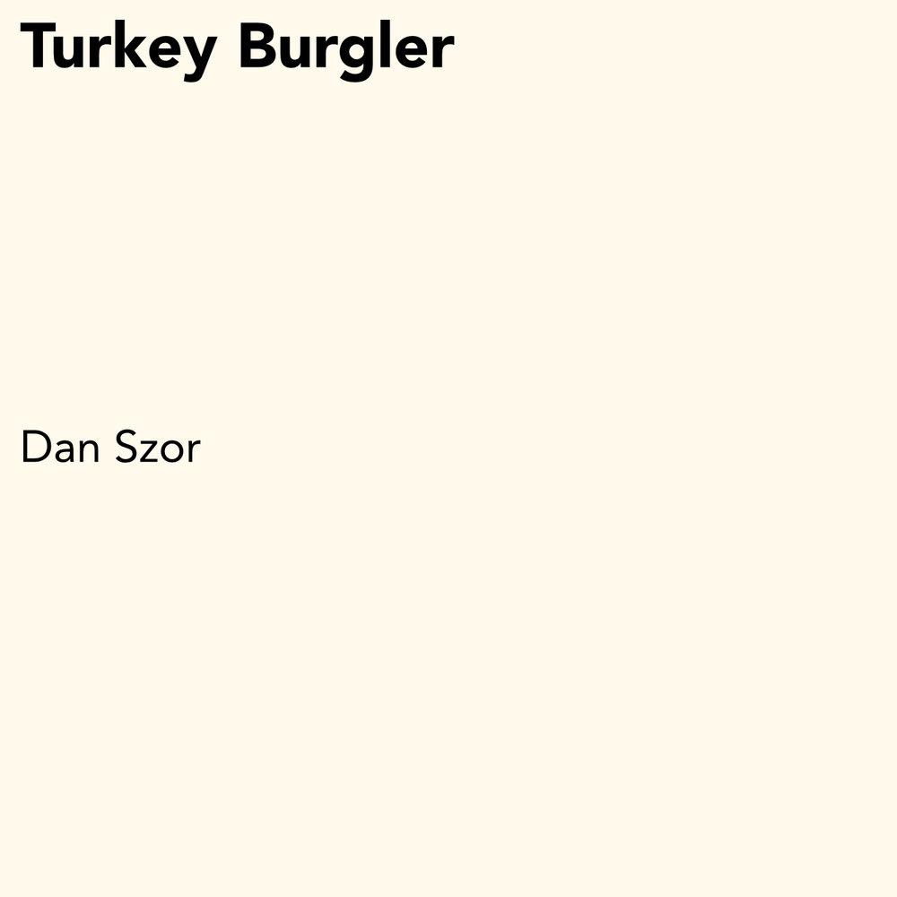 Dan Szor - Turkey Burgler.jpg