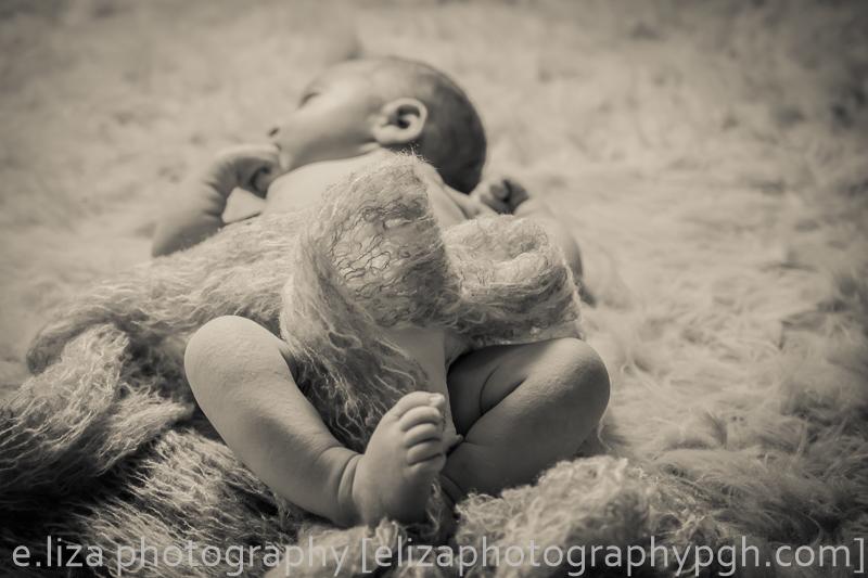 Newborn Photography :: Pittsburgh :: e.liza photography :: www.elizaphotographygph.com