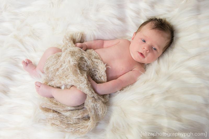newborn photography :: Pittsburgh :: www.elizaphotographypgh.com