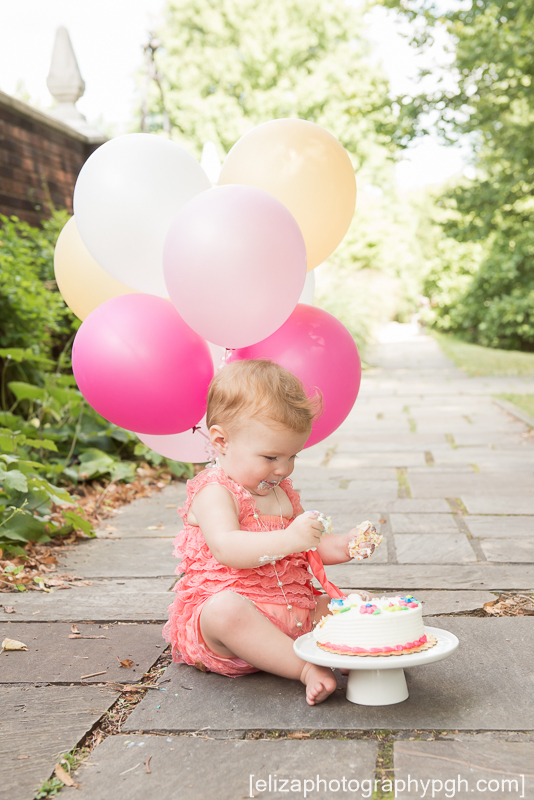 First Birthday Session : Pittsburgh : www.elizaphotographypgh.com