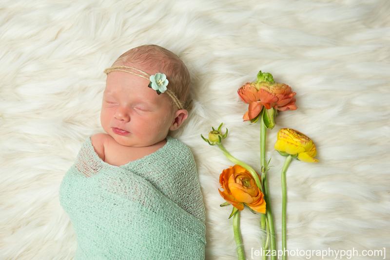 Copyright e.liza photography : Newborn Photography : Pittsburgh