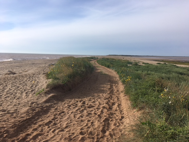 Track cut through dunes for Unimog Access