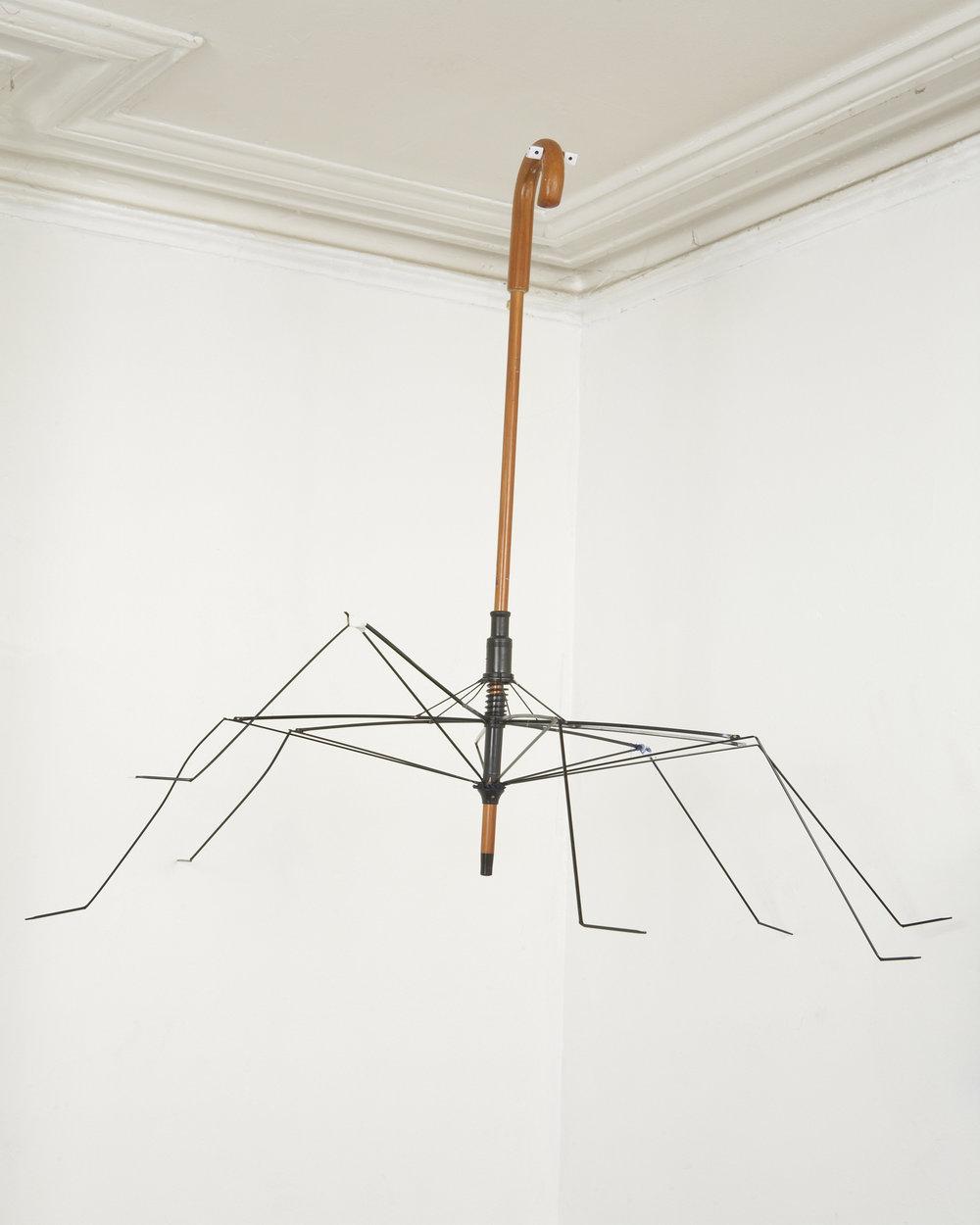 Spider Chigwell.jpg
