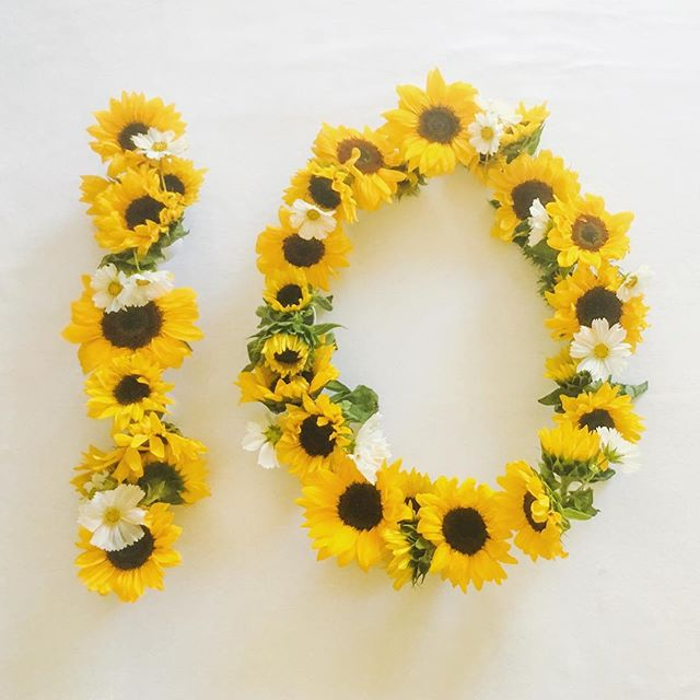 Bright, happy sunflowers for Elle's 10th month! #ellesfirst12