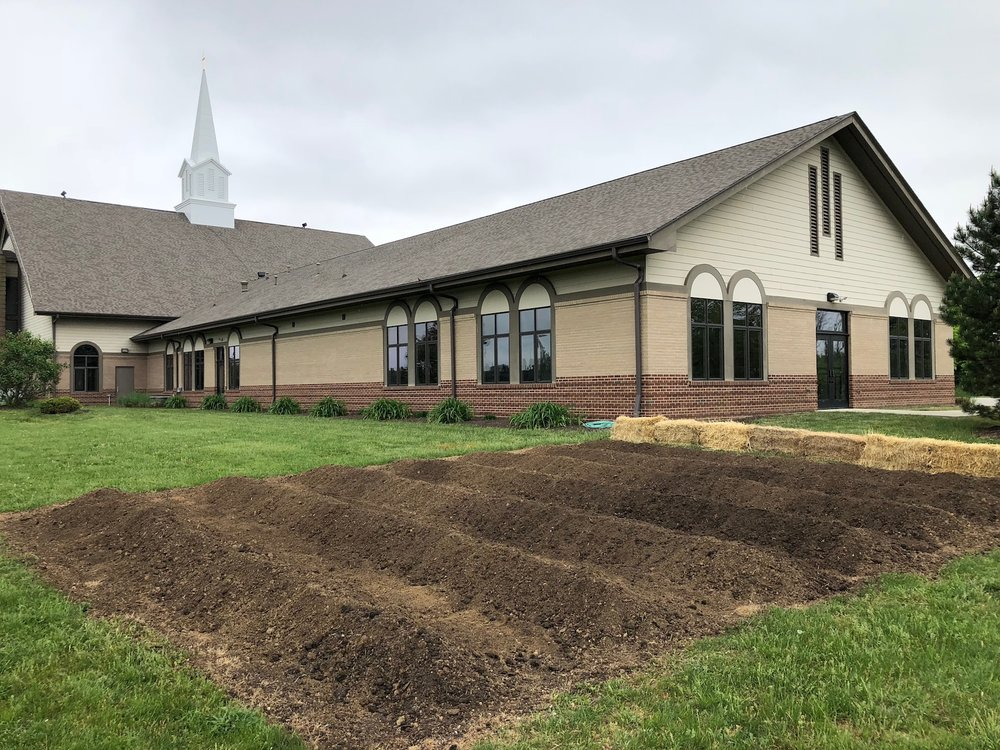 Ready for planting (May 2018)