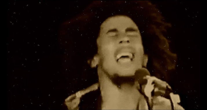 http://www.okayplayer.com/news/bob-marley-bus-dem-shut-echo-slim-remix-video.html