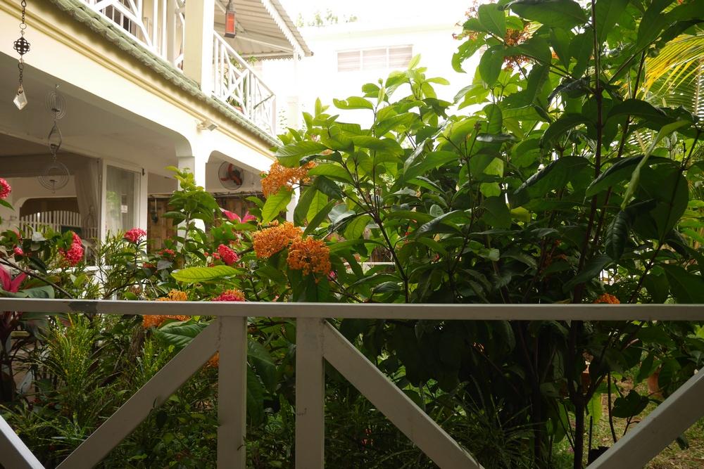 garden_space_working_Mauritius