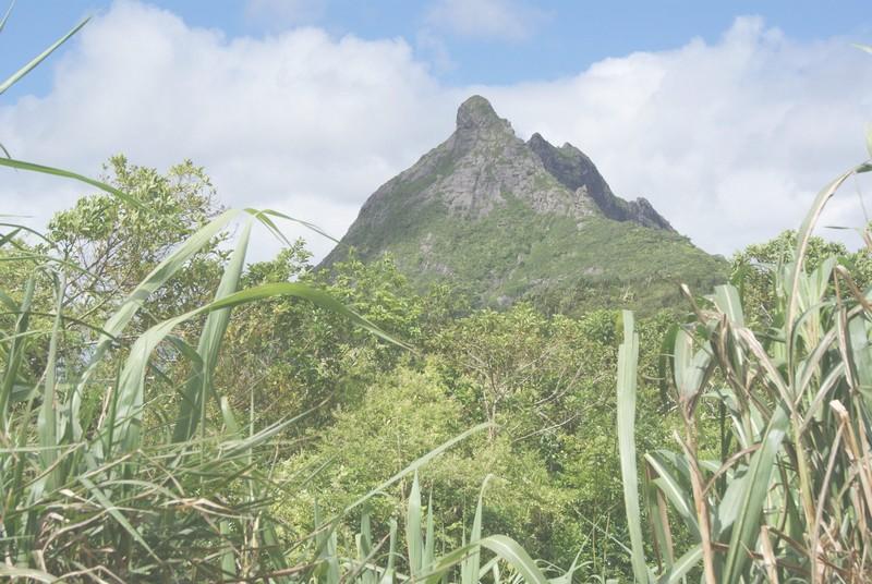 discover_mauritius_explore_island_adventure