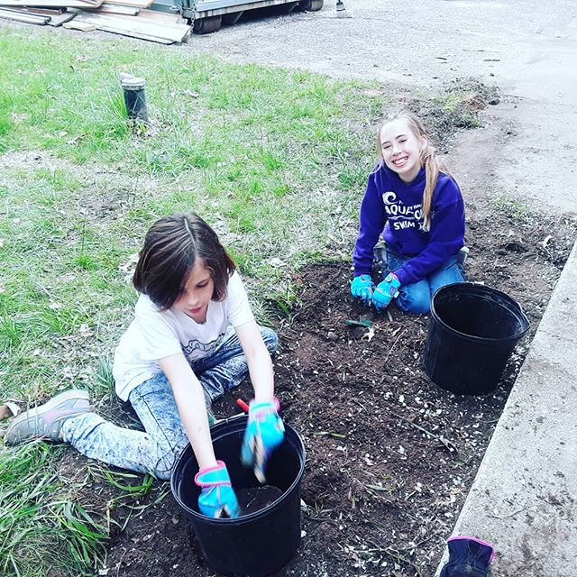 Digging rocks out of the soil.