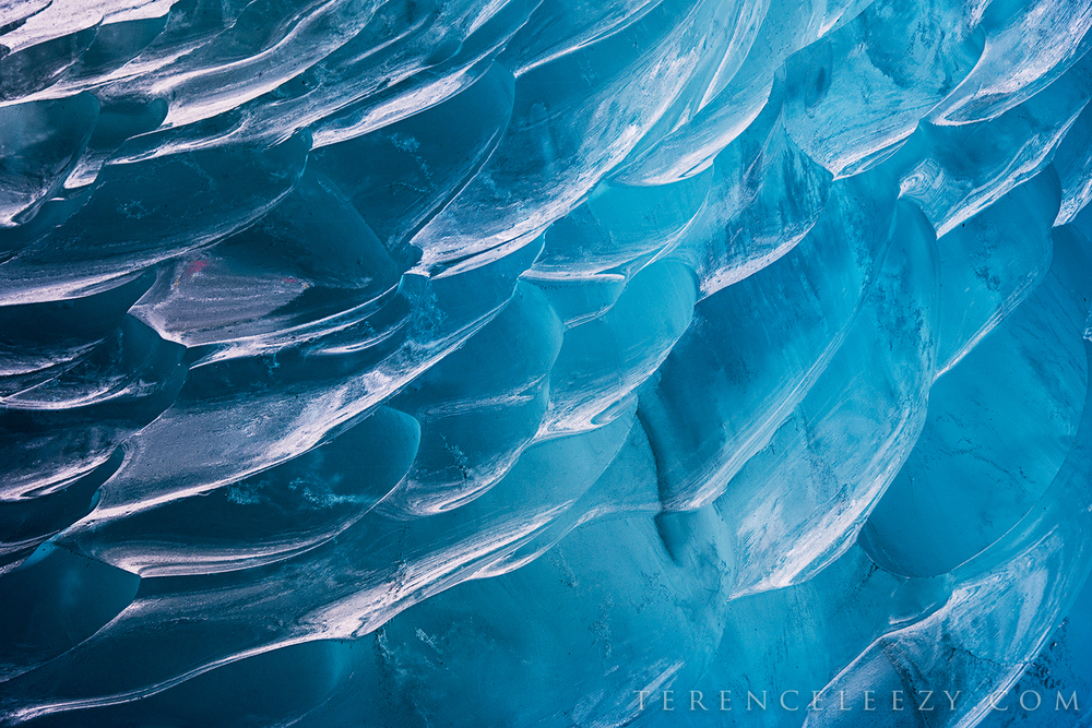 The sculpted ice walls inside an ice cave. Mendenhall Glacier.