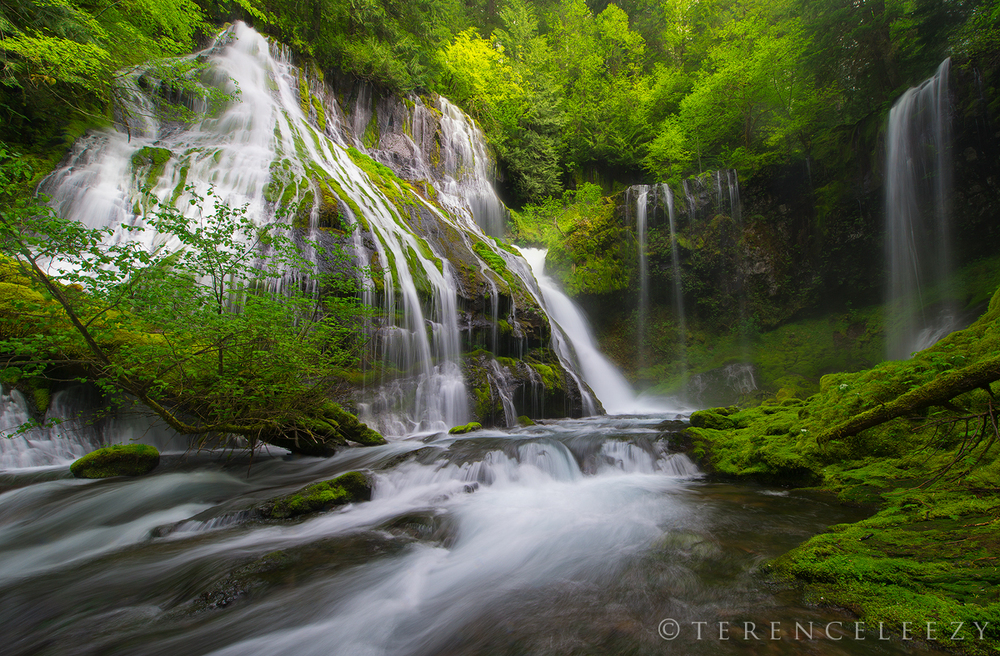 March - Panther Creek Falls, Washington