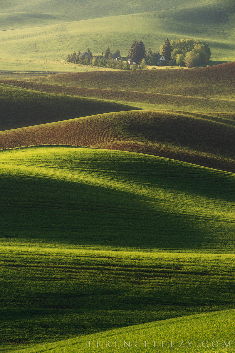 May - Steptoe Butte State Park, Washington.