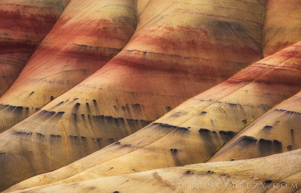 June - Painted Hills, Oregon