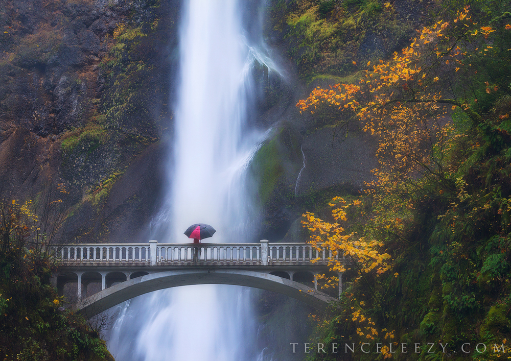 November - Multnomah Falls, Oregon
