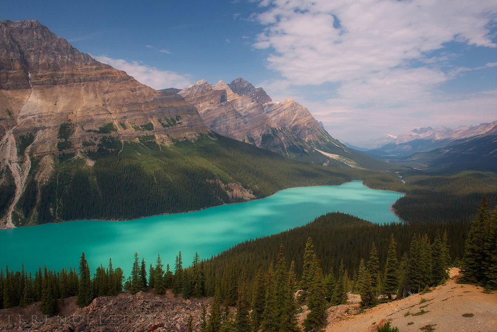 August - Peyto Lake, Banff, Canada