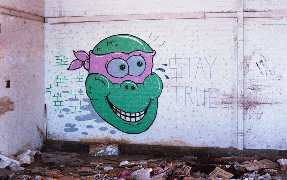 $tay true