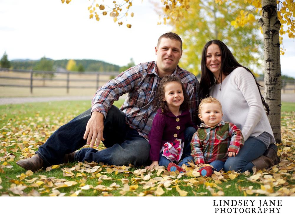 family015.jpg