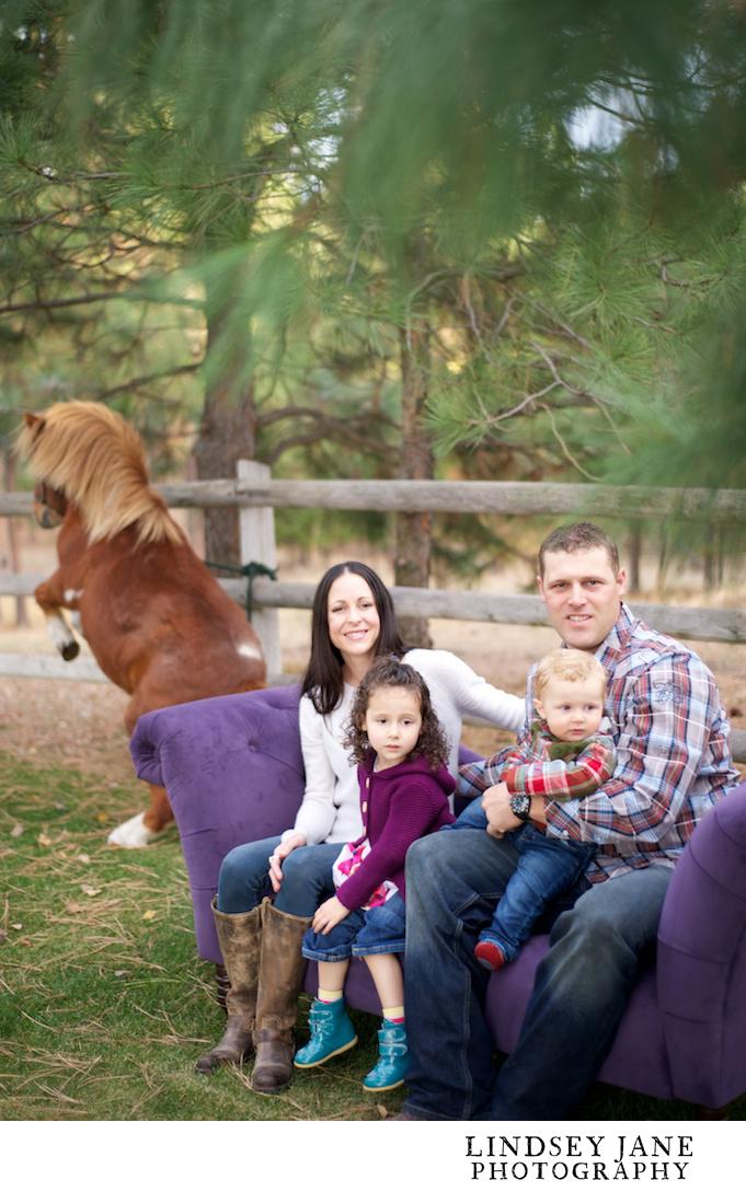 family022.jpg