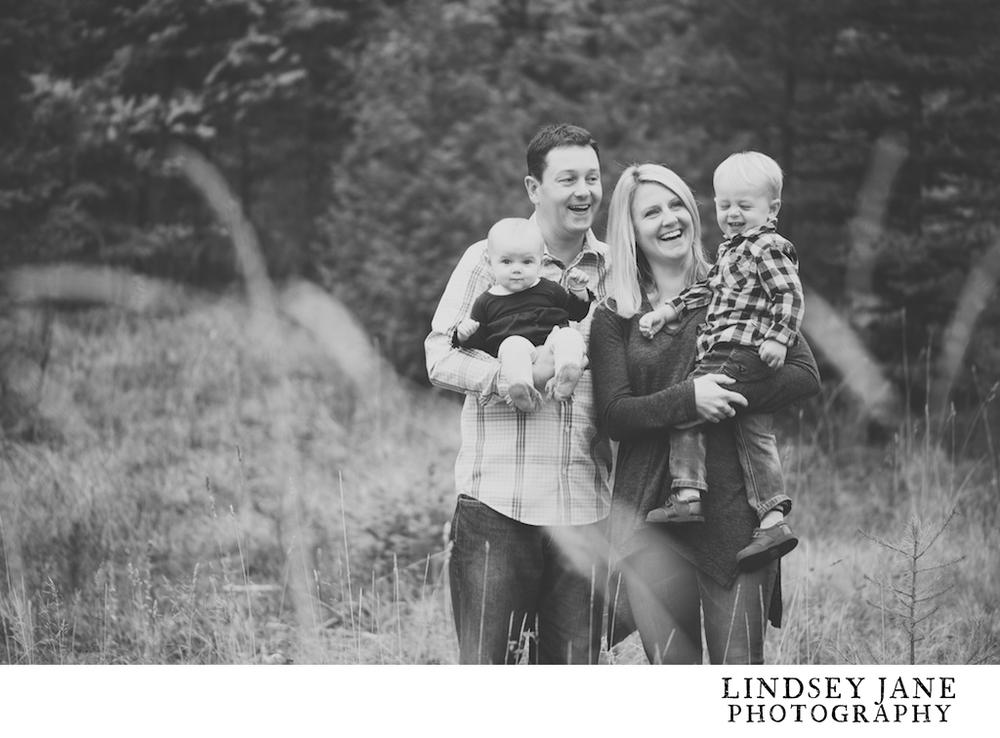 family014.jpg