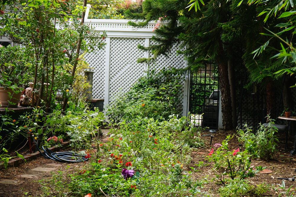 Garden_0173.JPG