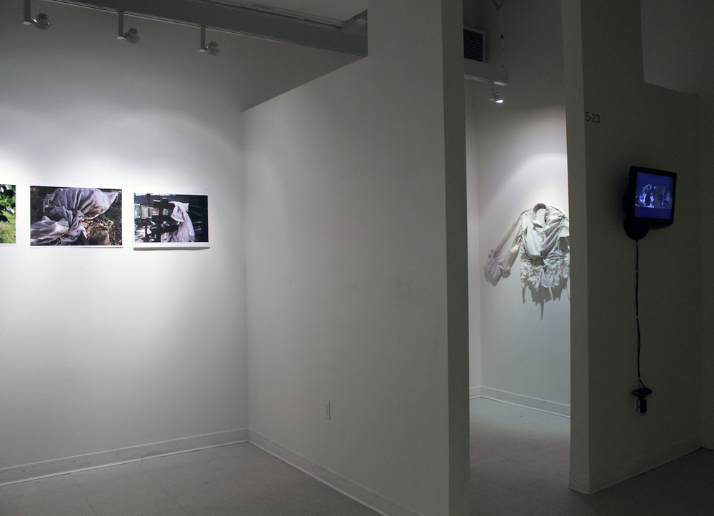 Remedy, 2013, installation view
