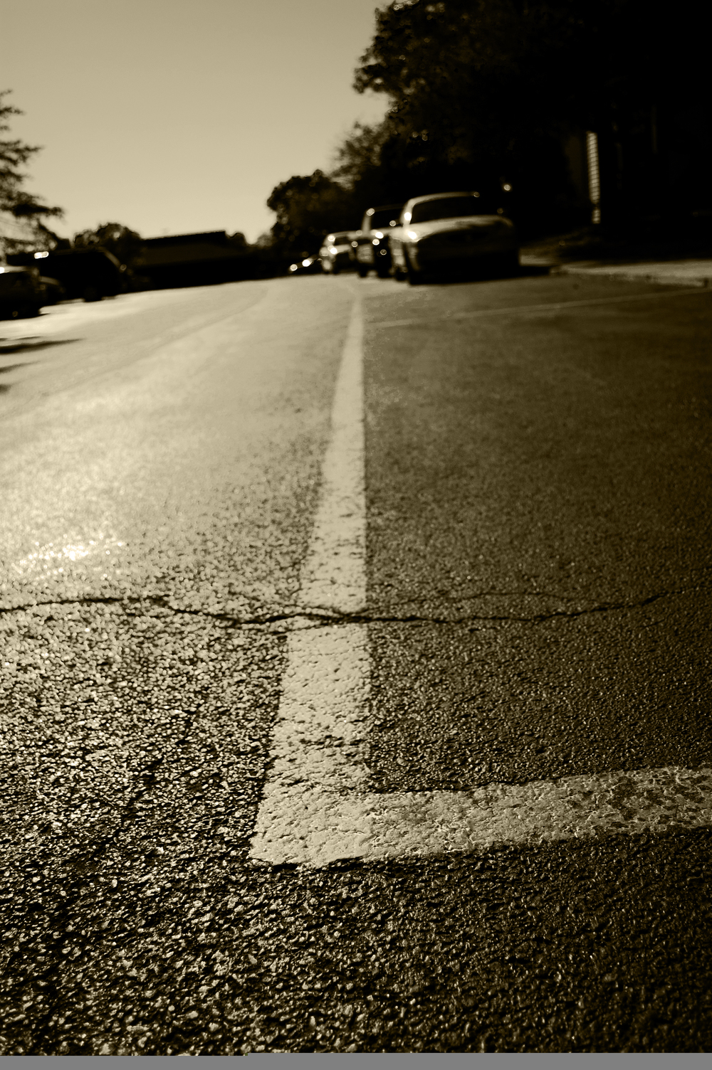 yellow line sepia.jpg
