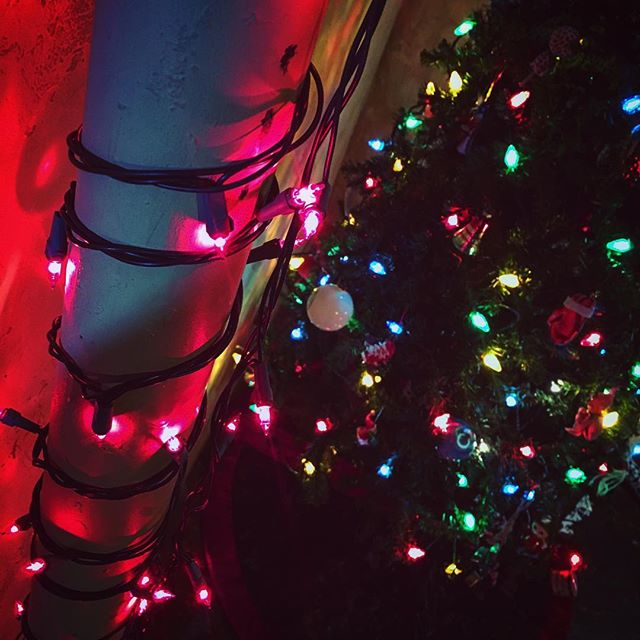 the darkest of days are brightened by the love that lights up the world this time of year. #hope #peace #year #yearend #time #thattimeofyear #christmastime #world #worldpeace #lights #litup #love #loving #bright #brightening #light #lighttheworld #lighting #christmasdecorations #christmaslights #dark #darkness #christmastree #christmas2016 #christmas #holidayseason #red #holiday #festive #homesweethome