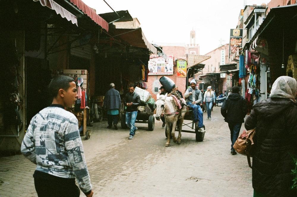 morocco_daphnetan25