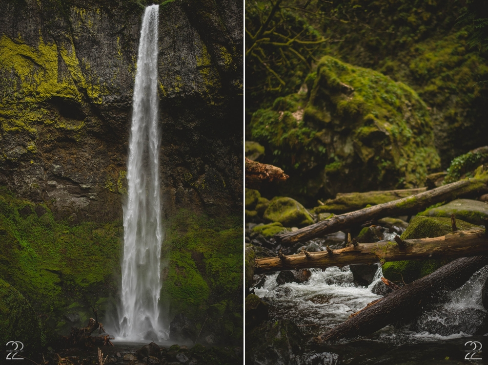 Portland Wedding Photography | Elowah Falls Elopement | Portland Engagement Photographers