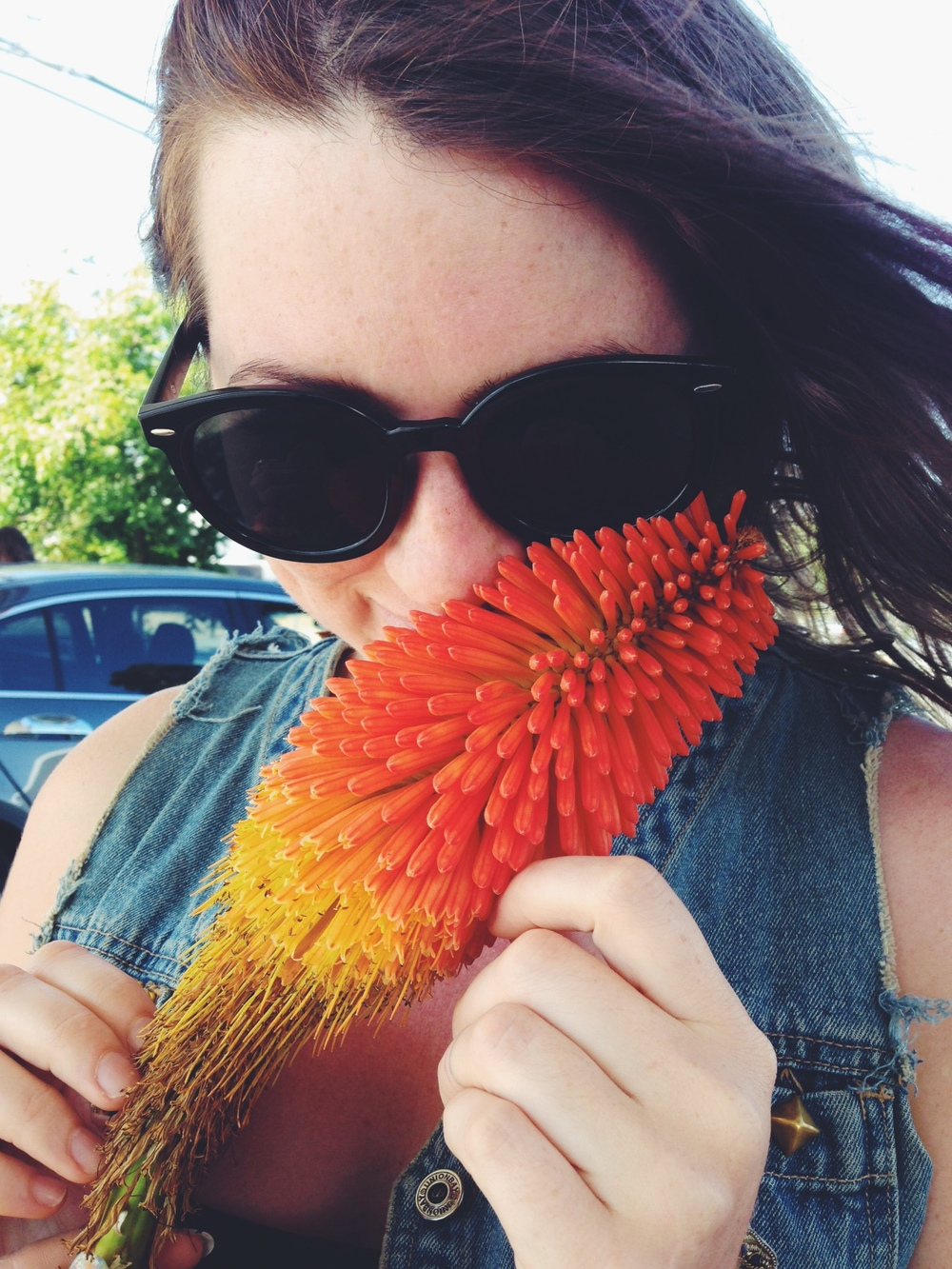 Some beautiful flower Anna picked off the road.