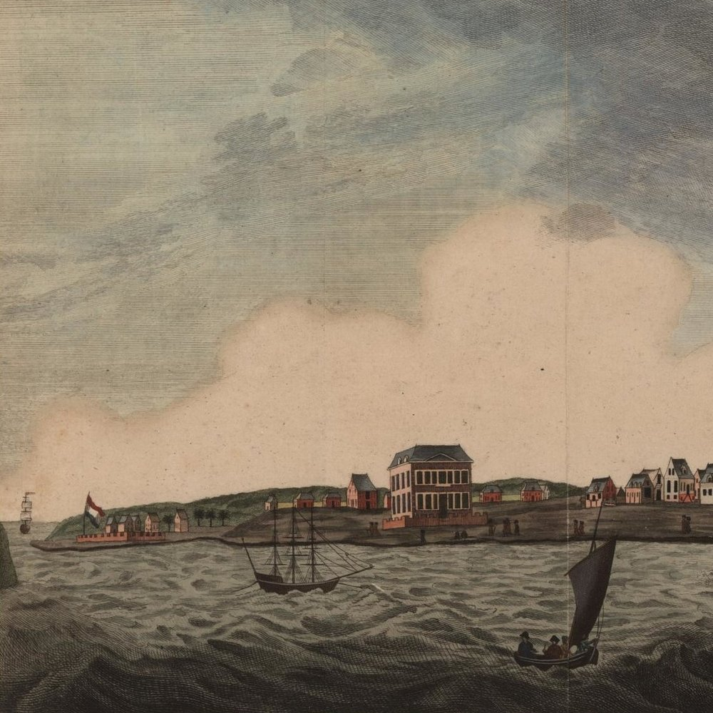 "Detail from ""Gezigt van de stad Nieuw-Amsterdam a Rio de Berbice,"" published by Bij C. Sepp Jansz (1807), © John Carter Brown Library, Brown University."