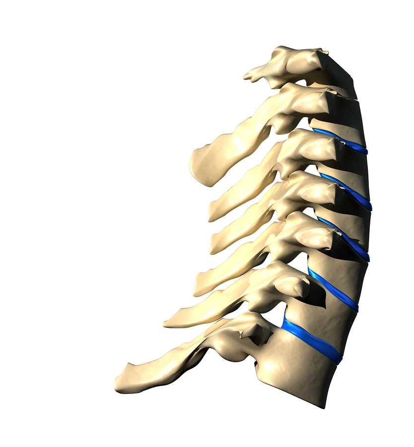 bigstock-Cervical-Spine--Lateral-view--44008336.jpg