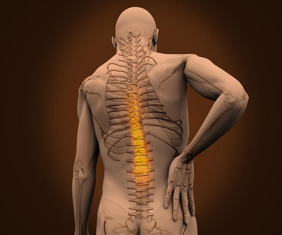 bigstock-Digital-skeleton-having-highli-41080939.jpg