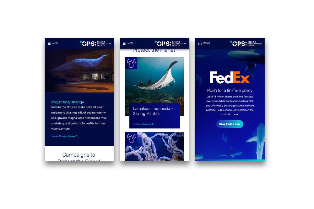 ops-slider-8 copy 2.jpg